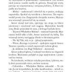 Klątwa Konstantyna fragment_Page_18