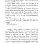 Klątwa Konstantyna fragment_Page_19